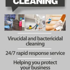 In Need of Anti-Viral Cleaning?